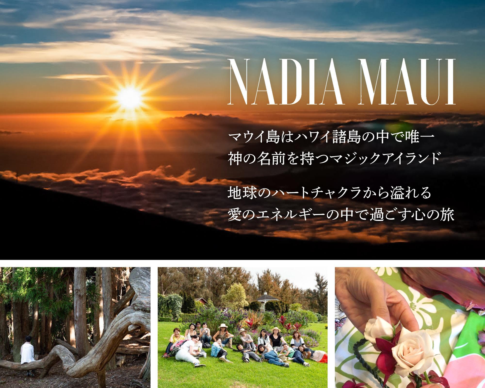 ハワイ ナディア村